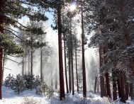 Lake Tahoe 2012 - Heavenly Light