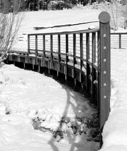 Lake Tahoe 2012 - Snowy Bridge