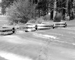 Lake Tahoe 2012 - Snowy Path